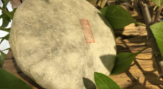 Poznejte oblíbený čaj pu-erh