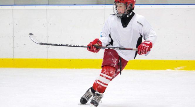 Bez čeho se hokejista neobejde?