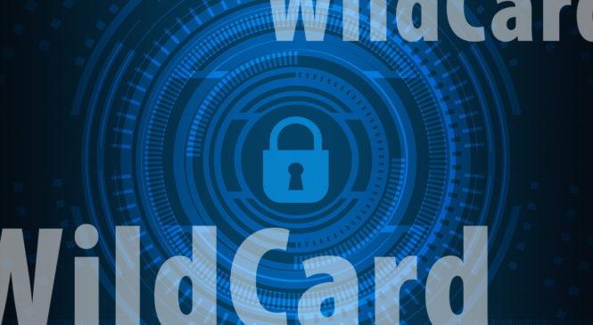 Co je to WildCard SSL certifikát