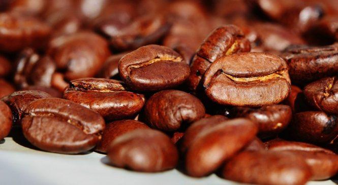 Víte, jakou kávu pijete? Nejspíš arabiku, ale co to znamená?